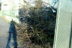 LENOVO_5_Raport_cu_poze__10_02_2021_15-48-26_img3